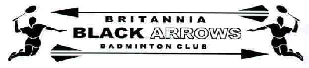 Old Britannia Black Arrows logo