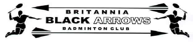 Old Britannia Black Arrows logo